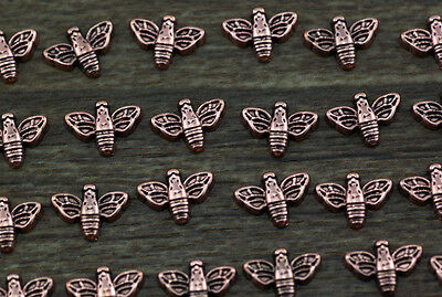 10pcs bee wholesale Floating Charms for Glass Memory Locket necklace e38