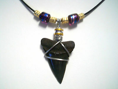 SHARK TOOTH SURFER BEACH WEAR NECKLACE ON SALE NOW
