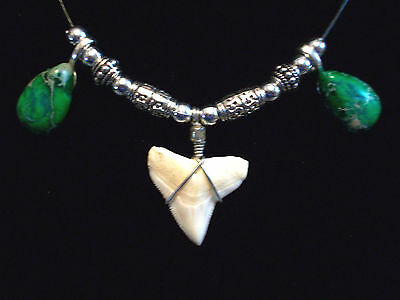 NICE SHARK TOOTH SURFER BEACH WEAR NECKLACE JEWELRY ON SALE