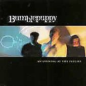 NEW An Evening at the Feelies by Bumblepuppy (CD, Jan-1998, (Independently by...