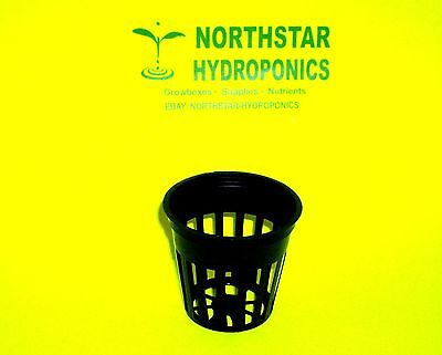 "50 2"" Inch Net Cup Pots Hydroponic System  Grow Kit"