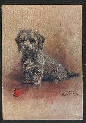 Dandie Dinmont Terrier   tobacco cigarette card postcard dogs 1930's #052