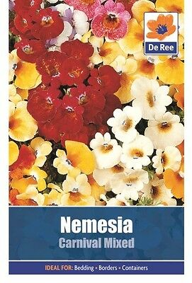 2 Packs of Nemesia Carnival Mixed Flower Seeds, Approx 170 Seeds per pack