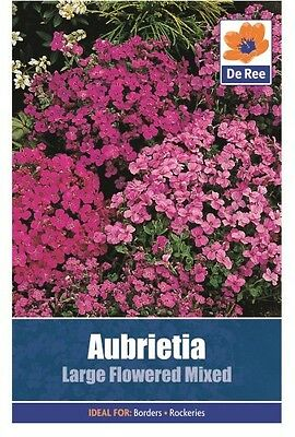 2 Packs of Aubrietia Large Flowered Mixed Seeds, Approx 160 seeds per pack