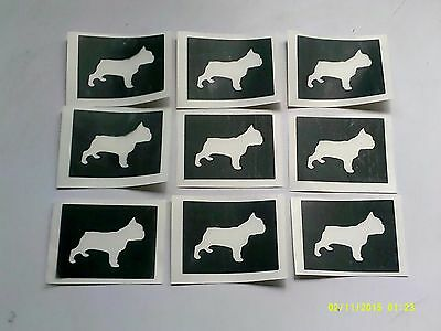 Puppy /& kitten stencils for etching on glass dog animal Crufts hobby commerative