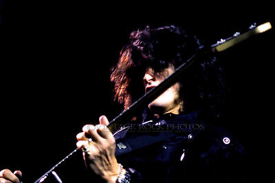 "Joe Perry Project Photo 8x12 or 8x10"" Studio Print '70s Vintage Live Concert 3"