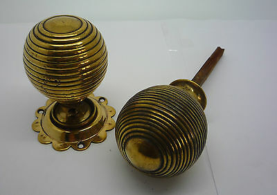 Antique Original Victorian Brass Beehive Style Door Knobs Cupboard (PH266)