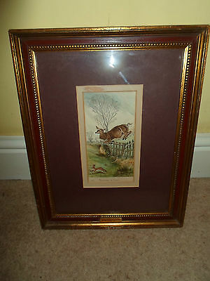 RARE Framed Watercolour Painting by W R Sculthorpe Bucking A Fence C1870-1900