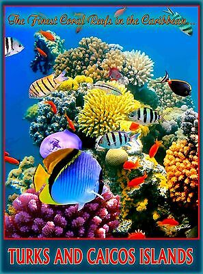 Turks and Caicos Islands Coral Reef Caribbean Travel Advertisement Art Poster