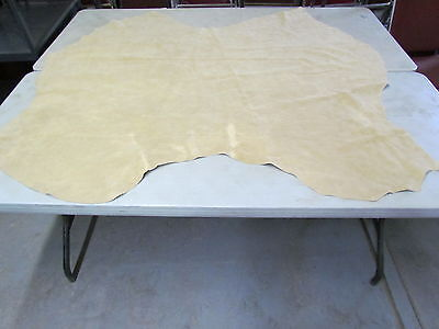 Native American Hand Tanned Moose Hide, 63 Inches Long, Thick In Some Areas