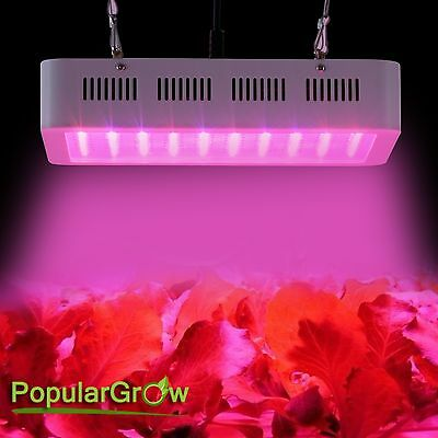 Populargrow Full Spectrum 300W LED Grow Light  Hydroponic Plant Veg Flower bloom