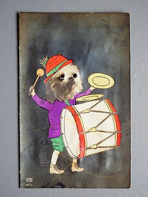 R&L Postcard: Novelty Dog Playing Drums, Glass Eyes, EAS