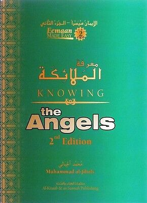 Knowing The Angels - PB