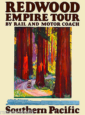 Redwood National Park S.P. California United States Travel Advertisement Poster