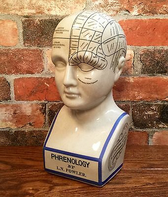 "Porcelain L.N. Fowler Phrenology Scientific Psychology 12"" Bust Head"