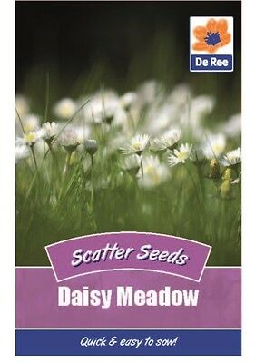 2 Packs of Daisy Meadow Scatter Seeds, Approx 400 Seeds per pack