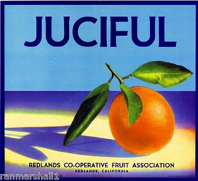 Redlands San Bernardino Juciful Orange Citrus Fruit Crate Label Art Print