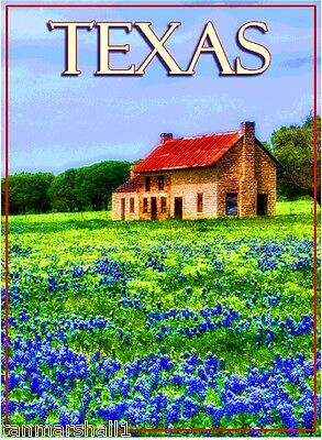 Texas Bluebonnet Flowers United States of America Travel Advertisement Poster