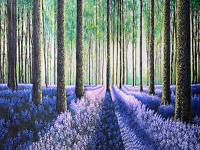 A0 size Aboriginal verbena woods forest Art  Signed Print jane crawford