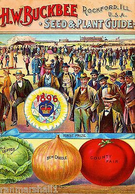 1896 - Buckbee Vegetables Vintage Seed Packet Catalogue Advertisement Poster