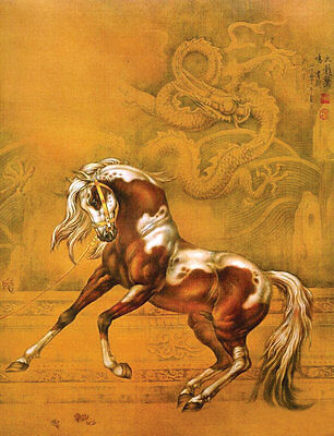 Modern Home Decor HD Prints oil painting on canvas emperor horse 16x20inch ADY65