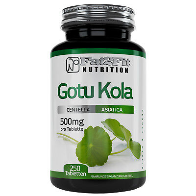 Gotu Kola (13,69€/100g) 250 Tabletten je 500mg - Die preiswerte Alternative