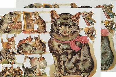 Chromo EF Découpis Chat 7214 Embossed Illustrations Cat