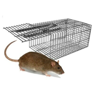 SINGLE CATCH RAT & MOUSE TRAP - Galvanised Wire Humane Safe Live Rodent Trapping