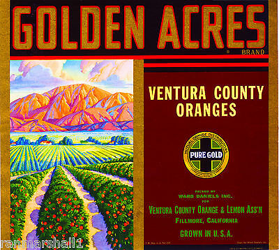 Fillmore Ventura California Golden Acres Orange Citrus Fruit Crate Label  Print