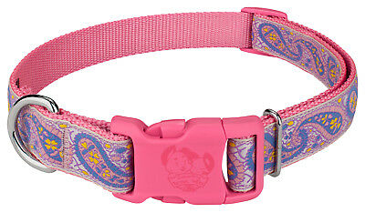 Country Brook Petz® Deluxe Baby Paisley with Pink Buckle Dog Collar