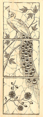 NEW C19105 Grow Flower /& Text Wood Mounted Rubber Stamp IMPRESSION OBSESSION