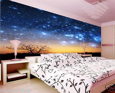 Prepasted wallpaper Mural photo Wall covering Decor sky night 2.1x1.5m B467