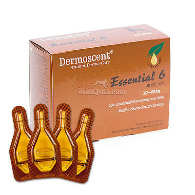 Dermoscent Essential 6 Spot-On - Perros / Dogs (20 - 40 Kg) - 4 Pipetas