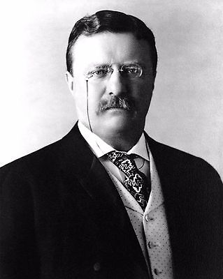 Theodore Roosevelt 26Th President Of The United States - 8X10 Photo (Zz-173)