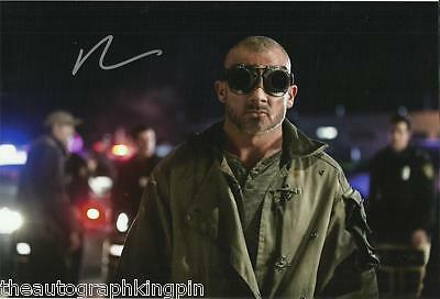 "DOMINIC PURCELL GENUINE AUTOGRAPH HAND SIGNED 12x8"" PHOTO COA 2"
