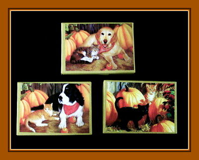 Set Of Three Fall Dogs And Cats With Pumpkins Gift Boxes - Beautiful