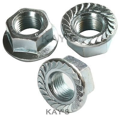 Flanged Nuts Serrated Zinc Plated Steel Flange Nut Bzp Metric M4 - M20