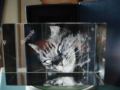 PERSONALIZED LASER PHOTO ENGRAVED  MEMORIAL CRYSTAL CATS DOGS HORSE PET GIFT a