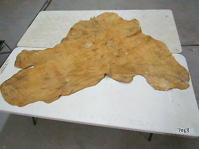 "Moose Hide Native American Tanned Soft 63"" By 55"" Smoked, Dark Colour, Sewing"