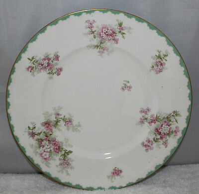 "John Maddock & Sons - Royal Vitreous - 9 3/4"" dinner plate - c1896"