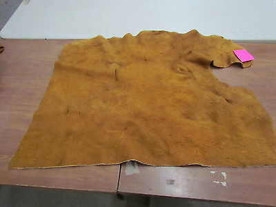 "Moose Hide Native American Dark Color Home Tanned Hide 40"" By 30"" Small, Sewing"