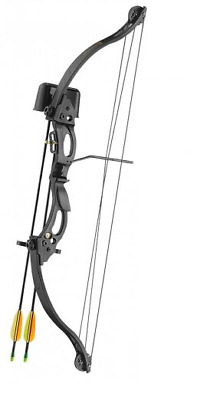 Black Warrior Compound Youth Bow Set/ Longbow Kit - Black With Arrows