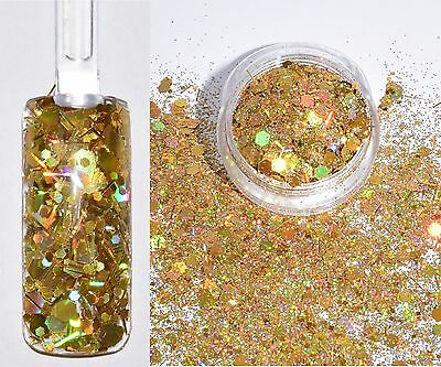 79,50€/100g Glitter Pailletten Glitzer Pulver Mix Hexagon GOLD 2g NailArt NEU