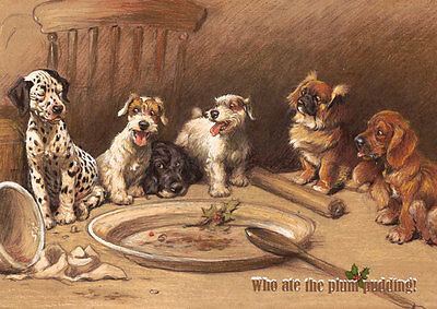 Cute mixed breed dog Christmas cards pack of 10 by Cecil Aldin.  C459x Plum Pud