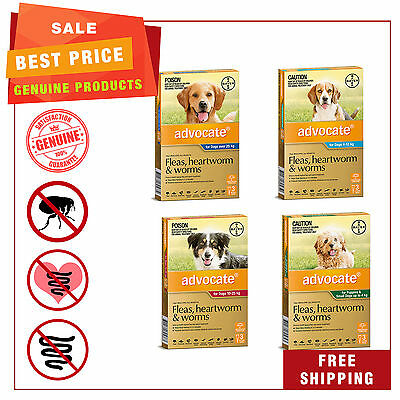 Advocate Flea Heartworm & Worm treatment for Dogs 3 Pipettes by Bayer All sizes