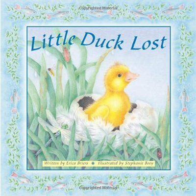 Little Duck Lost,Erica Briers,New Book mon0000026104