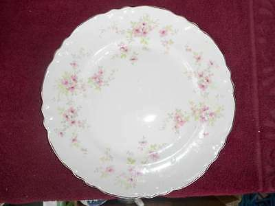 """WS George 10"""" Dinner Plate 296a Pink Flowers Lido"""