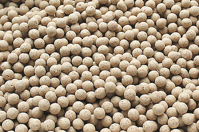 10mm White Chocolate & Coconut Boilies - Top Quality - Carp Love These!