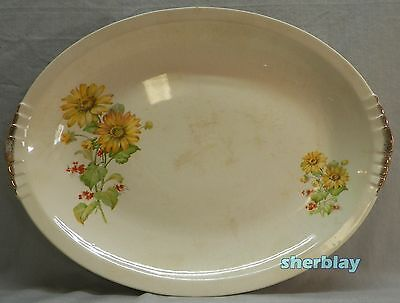 "RARE The PADEN CITY POTTERY Yellow Daisies Red Flowers OVAL PLATTER 14 1/2"" Long"