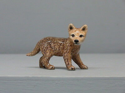 Old Northern Rose Wolf Cub